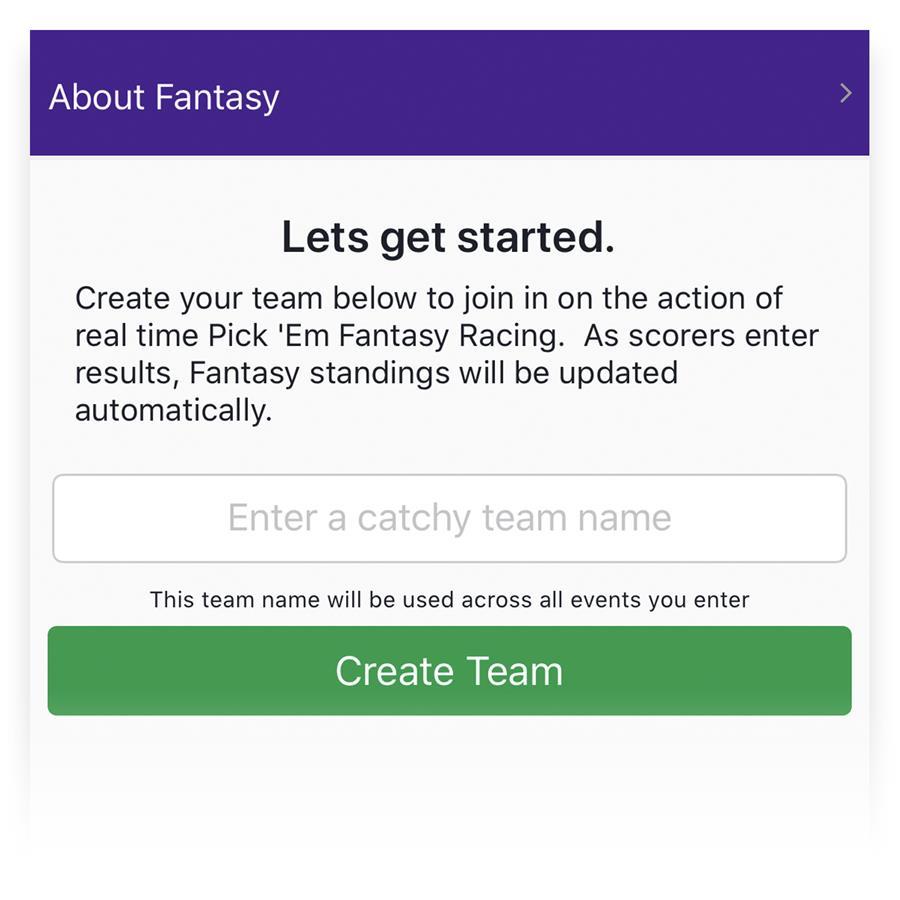 Create a Fantasy Team