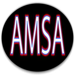American Micro Sprint Association